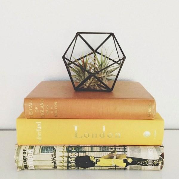 geometrischer terrarium Meg A Myers Designs
