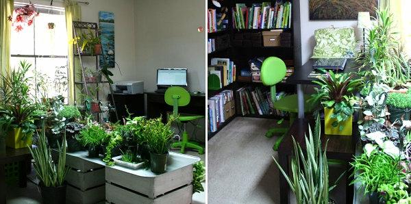 Designideen Pflanzen Wohnzimmer Gartenideen Dekoideen