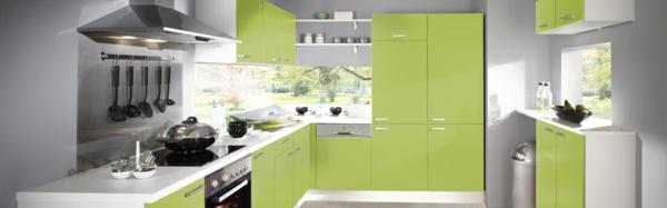 küchenschränke küchenfronten bekleben mit folie grün matt küchenfronten erneuern