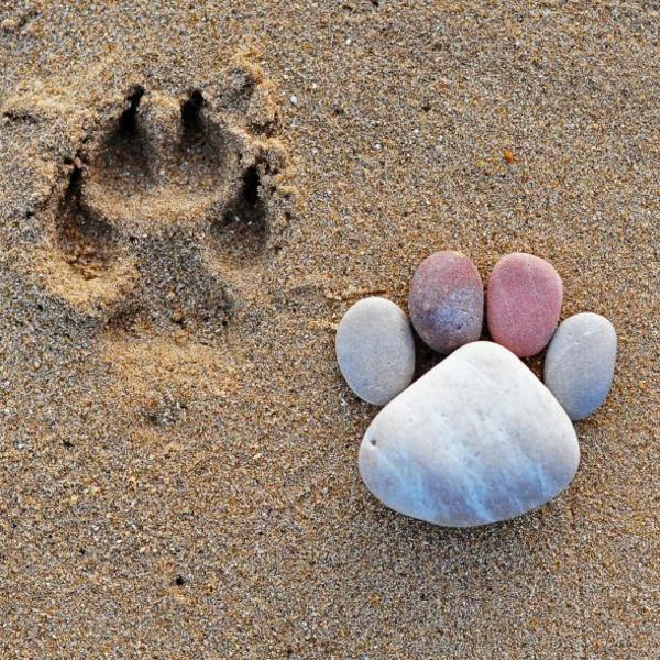 kieselsteine gartendekorationen steinfüsse strand