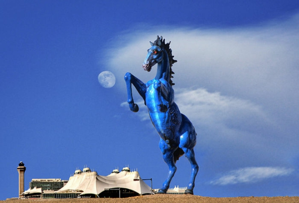 kunstwerke kunst blue mustang amerika