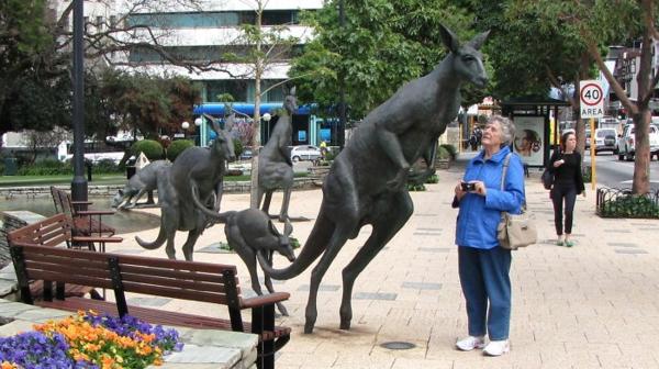 kunst und kultur känguru