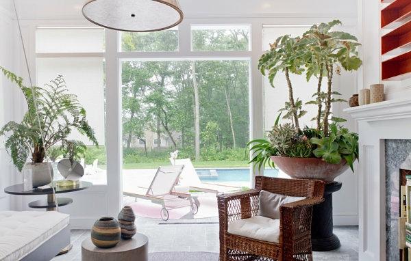 wohnzimmer pflanzen schattig raum und m beldesign. Black Bedroom Furniture Sets. Home Design Ideas