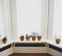 Schöne Zimmerpflanzen – moderne, pflegeleichte Topfpflanzen