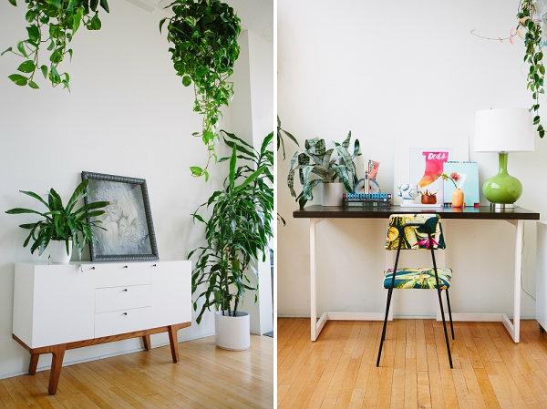 pflegeleichte weiß sideboard Schöne Zimmerpflanzen kommode