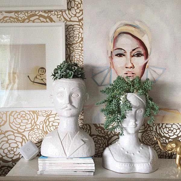 pflegeleichte Schöne Zimmerpflanzen standbilder weiß