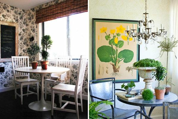 pflegeleichte Schöne Zimmerpflanzen topfpflanzen groß