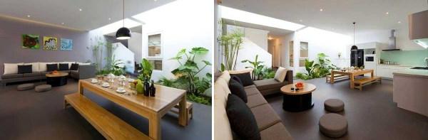 pflegeleichte Schöne bilder Zimmerpflanzen wohnen ideen