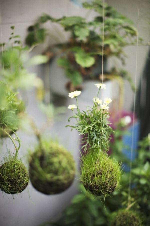 schöne Gartenideen garten bilder gartendekorationen hängend