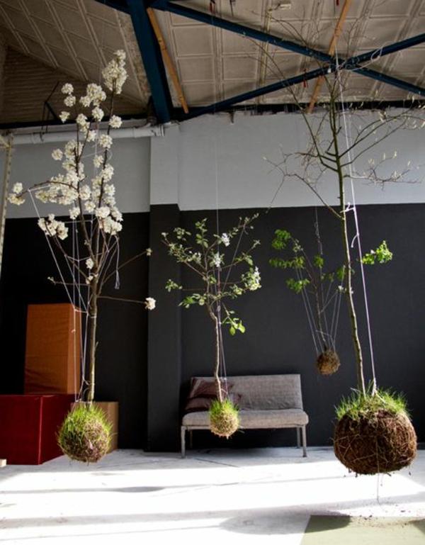zimmerpflanzen Gartenideen garten bilder gartendekorationen patio