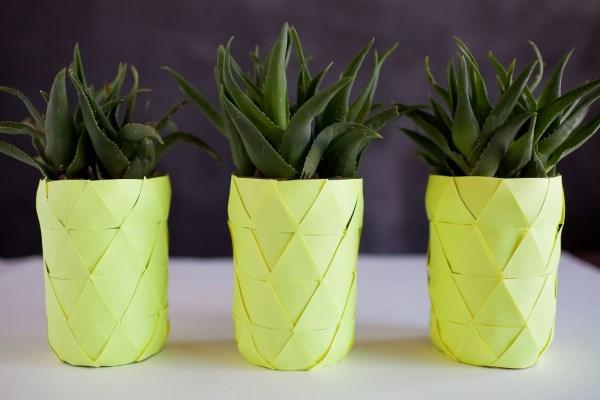 sommerparty deko ananas zimmerpflanzen ideen