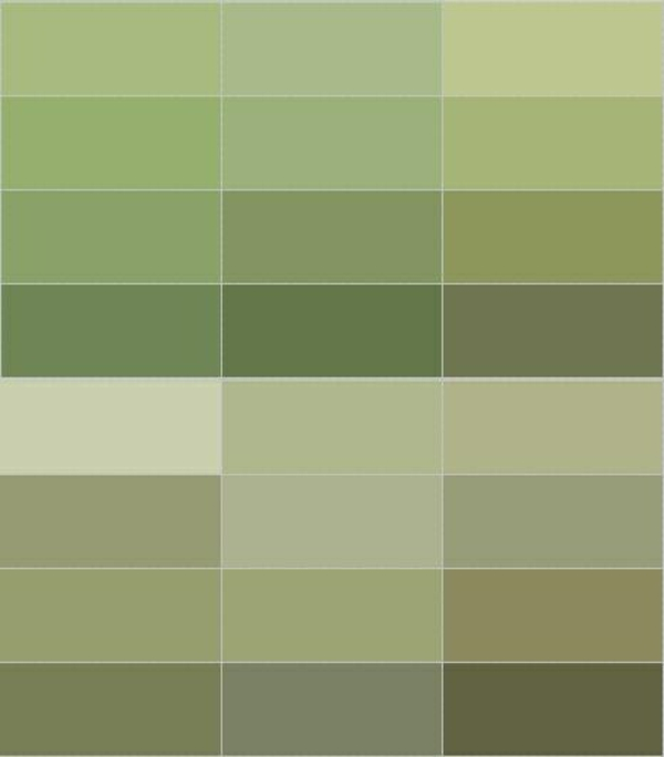 Olive Green Paint Colors Car Interior Design