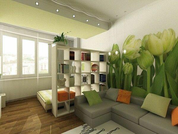 einraumwohnung einrichten in grün regalsystem sofa bett
