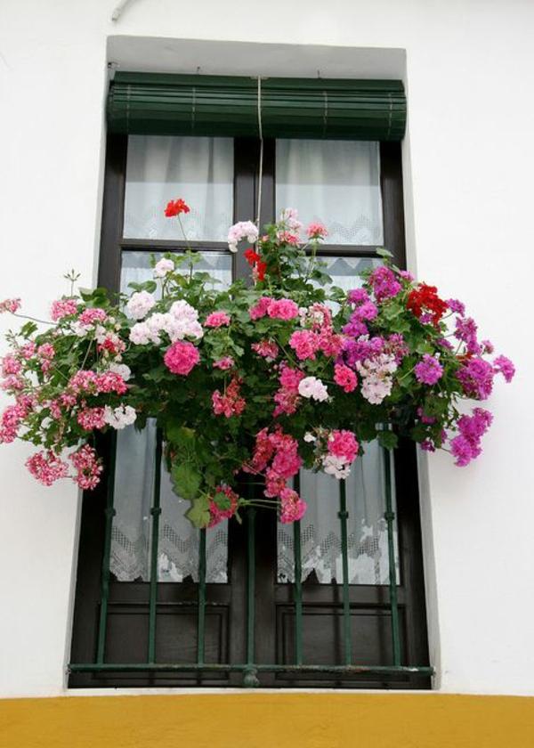 Balkonbepflanzung Ideen hängend balkongeländer