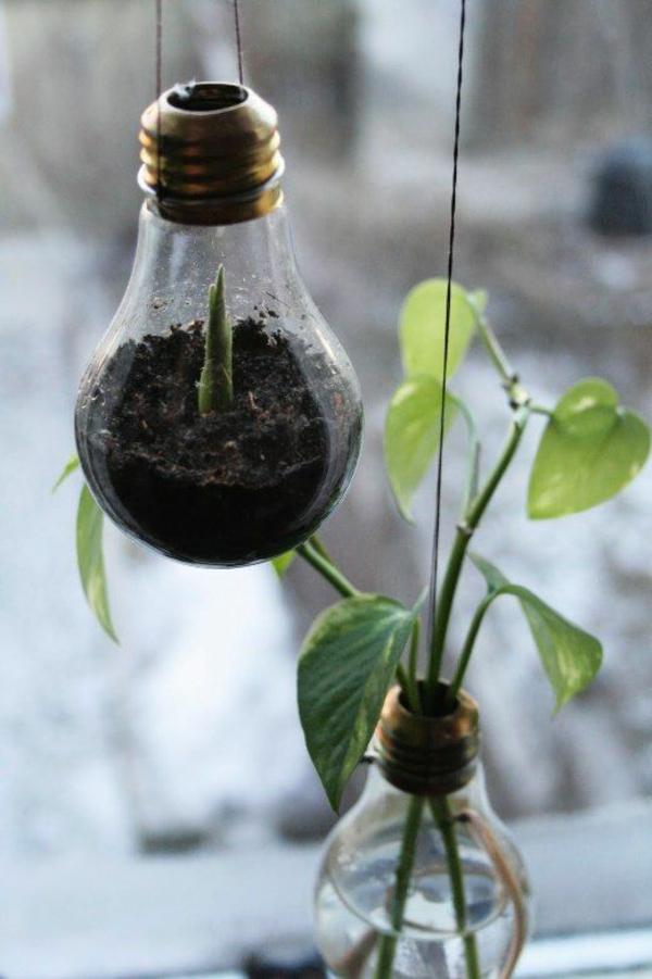 DIY Deko aus Glühbirnen erdboden pflanzen