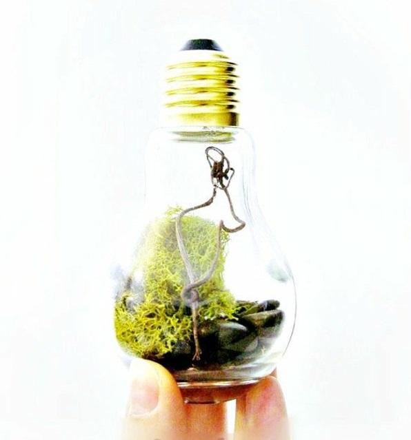 DIY Deko Glühbirnen moos gras