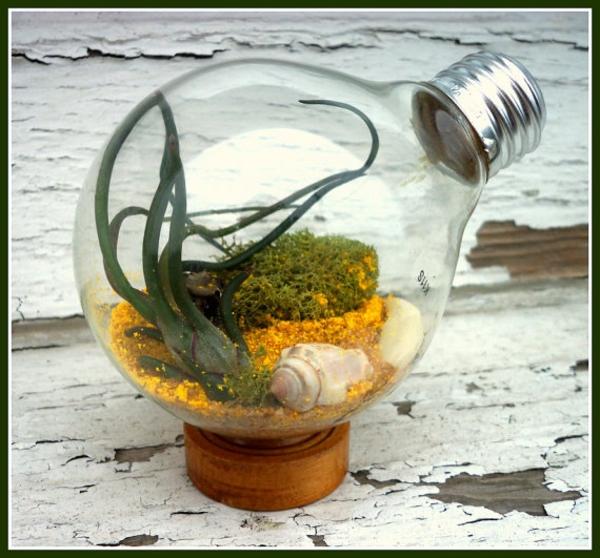 DIY Deko Glühbirnen ständer air plant
