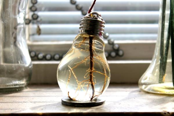 DIY Deko aus Glühbirnen wasser