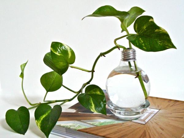 DIY-Deko-aus-Glühbirnen-zimmerpflanzen