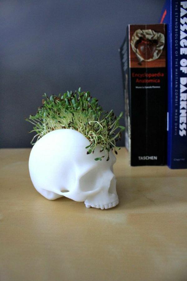 Grünpflanzen Bilder art kunstvoll blumentopf