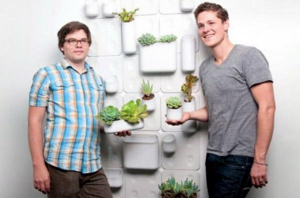 Grünpflanzen Bilder design gestalten modular system