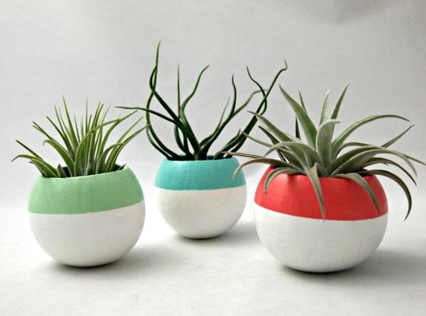pflanzen minimalistisch struktur Bilder designer töpfe