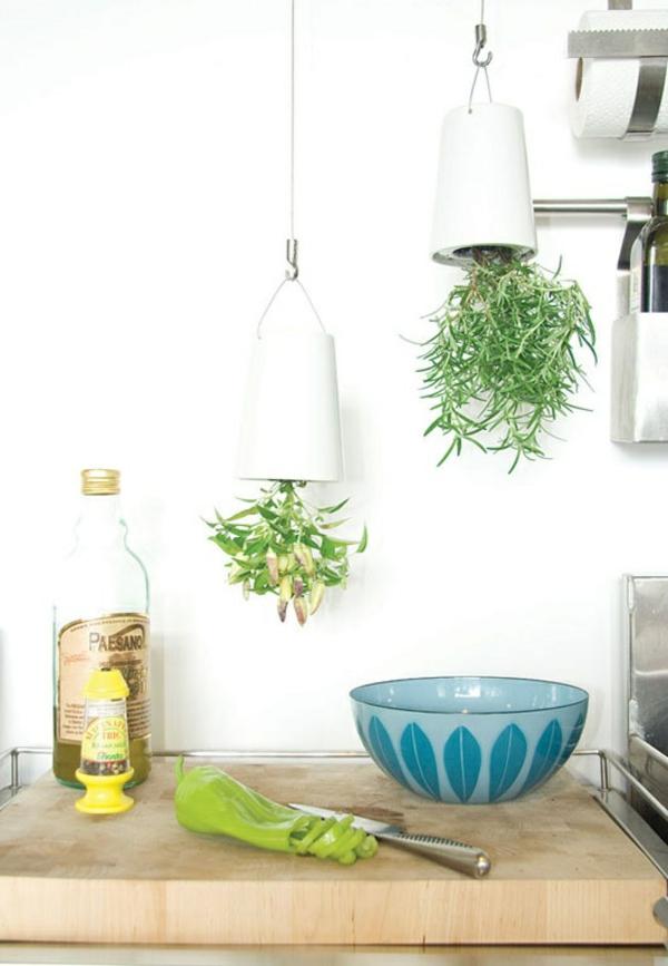 Grünpflanzen umgekehrt Bilder hängend innovativ