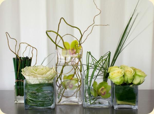 35 Grünpflanzen Bilder - Blühende Zimmerpflanzen
