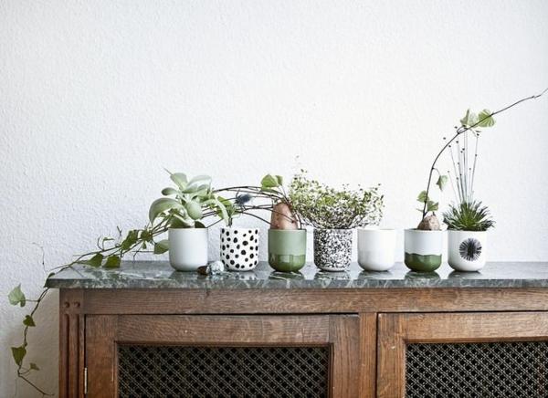 Grünpflanzen Bilder topfpflanzen zimmer tisch