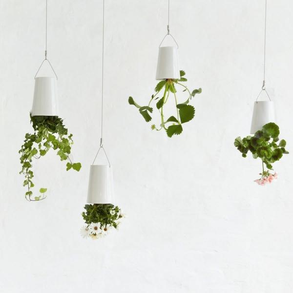 Grünpflanzen Bilder umgekehrt vertikal garten