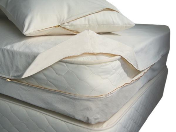 Milben im Bett sauber matratze bettwäsche