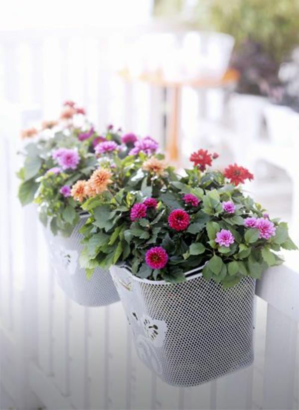balkon bepflanzen blumenkasten balkongeländer