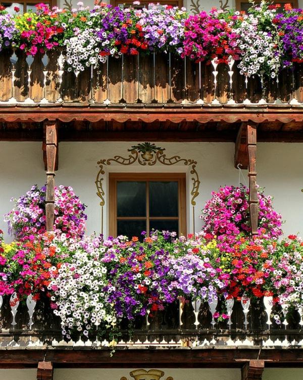 balkon blumenkasten traditionell bepflanzen bunt bepflanzt