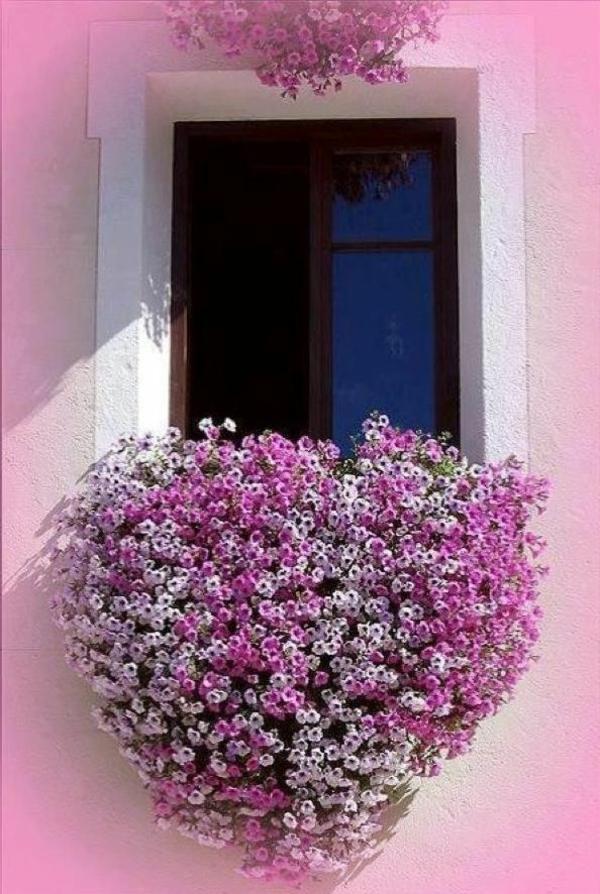 balkon gartenkunst bepflanzen blumenkasten herzenförmig blumen