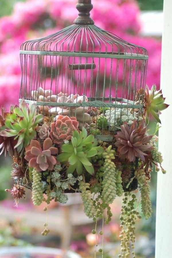 balkon sukkulenten bepflanzen blumenkasten nett