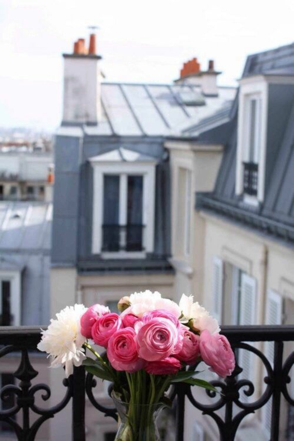 balkon bepflanzen blumenkasten rosen