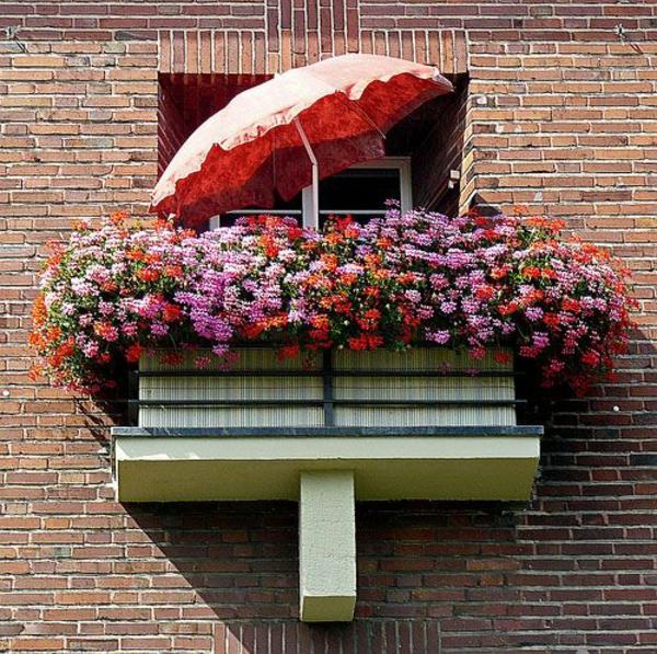 balkon bepflanzen blumenkasten sonnenschirm