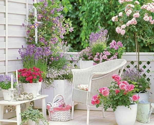 55 Balkonbepflanzung Ideen Tolle Blumen Fr Balkon