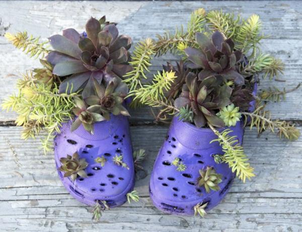 blumenbeet anlegen in flipflops lila