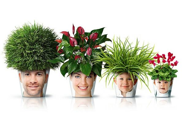 blumenkübel moderne pflanzgefäße deko ideen good balkonpflanzen zimmerpflanzen