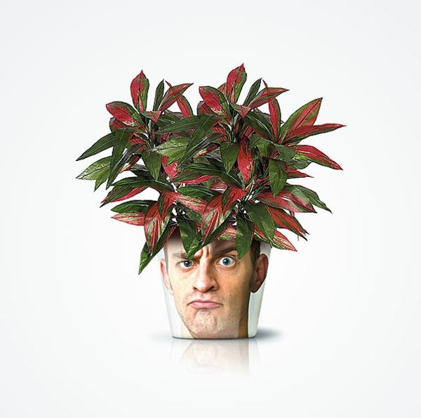 blumenkübel moderne pflanzgefäße deko ideen good pflanzencontainer mit gesicht