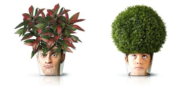 blumenkübel moderne pflanzgefäße deko ideen good zimmerpflanzen