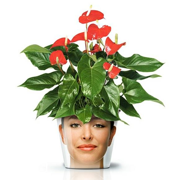 blumentöpfe moderne pflanzgefäße coole deko ideen good design blumenkübel mit gesicht