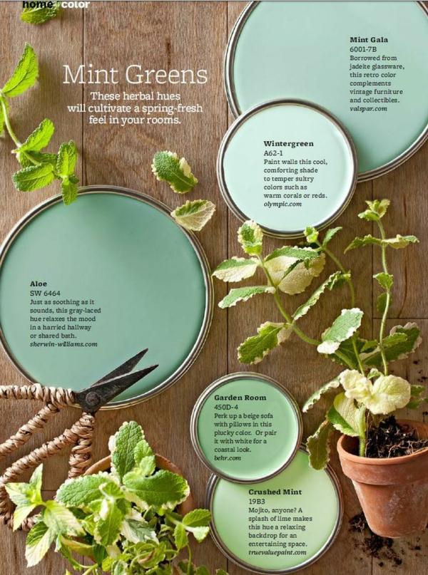 farbgestaltung mintgrün farbnuansen inspiration aus der natur minze