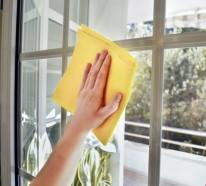 Fenster putzen profi