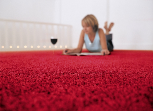flöhe wohnung teppich rot wein