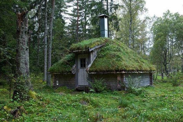 garten dachbegrünung gartenhaus natur