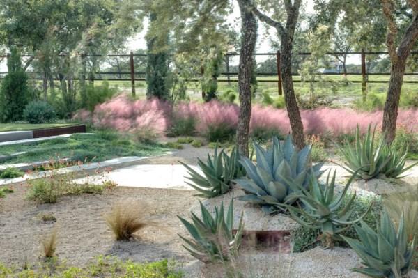 gartengestaltung mit steinen pflegeleichte gartenpflanzen sukkulenten