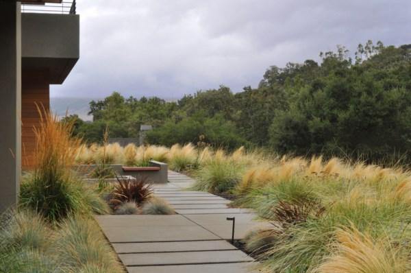 gartengestaltung und landschaftsbau pflegeleichte gartenpflanzen hitzefest außenbereich gestalten