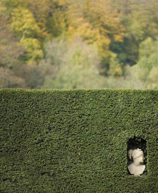 gartenzaungestaltung gartenideen lebender zaun hecke statue